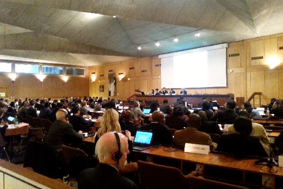 Second Ministerial Preparatory Committee Meeting, UNESCO Headquarters, Paris, 24 February 2015