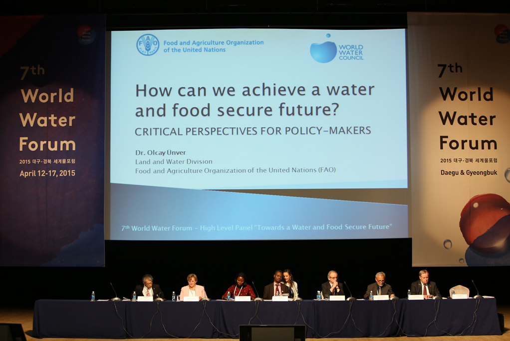High Level Panel 'How can we achieve a water and food secure future', Daegu, Republic of Korea, 13 April 2015. Photo: World Water Council.