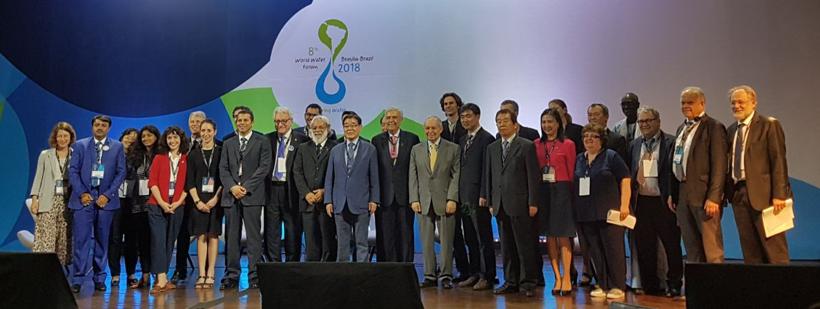 Implementation Roadmaps Champions at the 8th World Water Forum special session