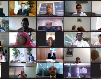 Participants of the virtual meeting organized on 27 July 2020