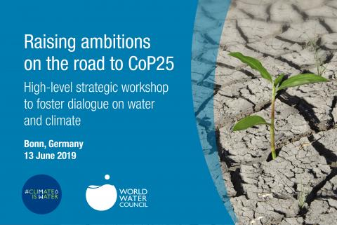 High-level Strategic Workshop on Water and Climate, Bonn 2019
